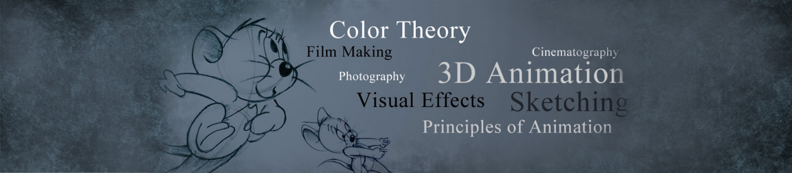 3D Animation Agency